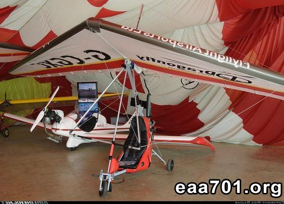 Grasshopper ultralight aircraft for sale