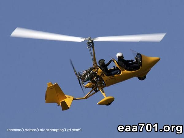 Light sport aircraft pilot requirements